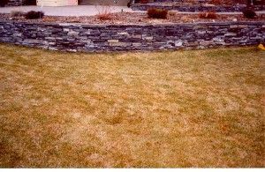 Raised Rundle Stone Flower Bed on lawn is level on top with sidewalk
